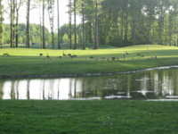 Sweetbriar Golf Club - Sweetbriar 18