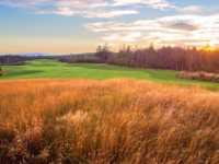 Clovelly Golf Club - Black Duck - NFLD