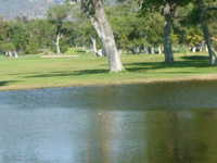 Cottonwood Golf Club - Lakes