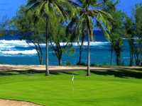 Turtle Bay Fazio Course
