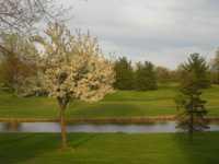Raccoon Hill Golf Club