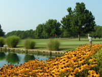Crab Orchard Golf Club