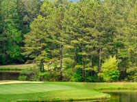 Foxfire Resort & Golf - Red Fox